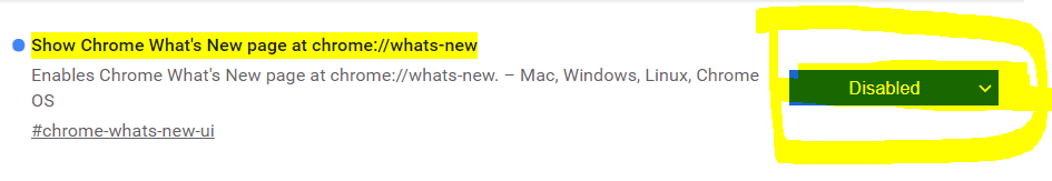 Chrome跳转到whats-new链接解决办法